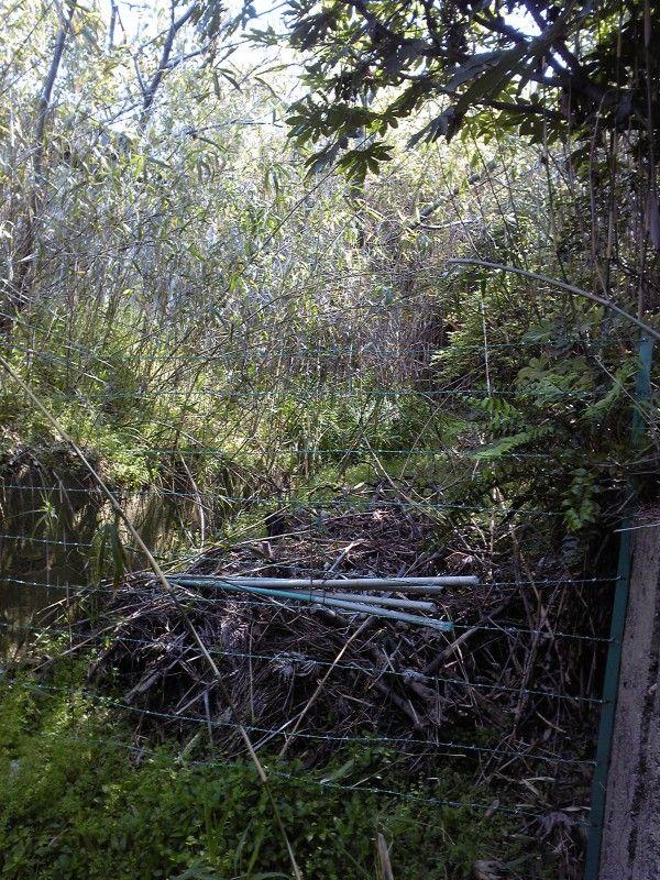 下関市彦島にある三井金属元社宅地区にあった公園