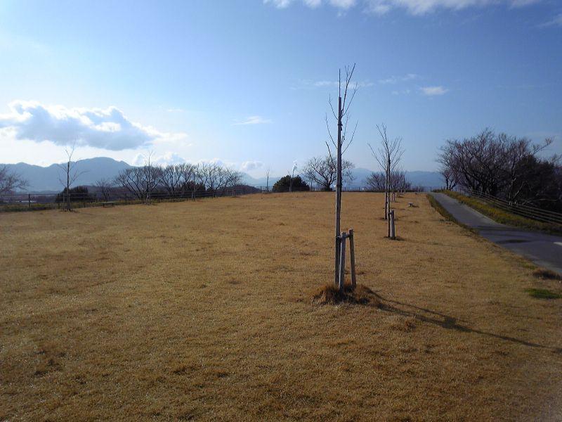 整備工事後の彦島老の山(1)