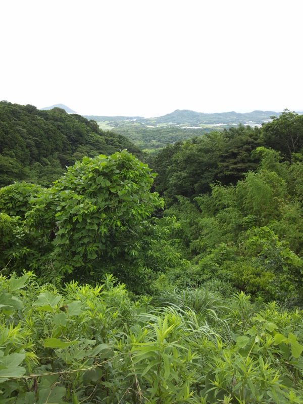 「たかせ」から帰宅途上の風景