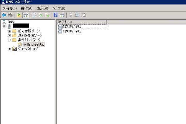 条件付フォワード(Windows Server2008R2のDNSにて)